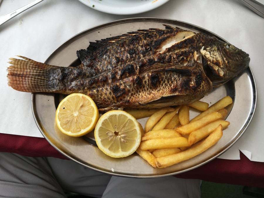 Silberner Teller mit gebratenem Petrusfisch, Pommes frites und Zitronenscheiben