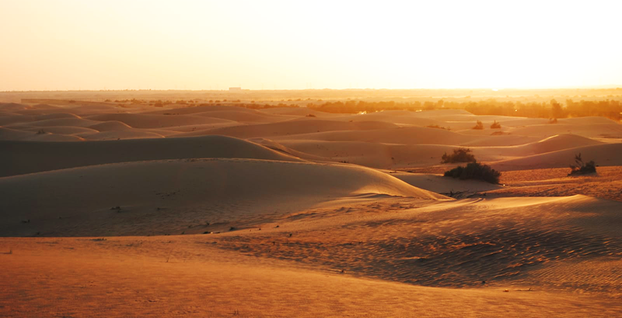 Sonnenuntergang in der Wüste - orangerot!