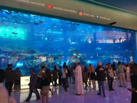 Das riesige Aquarium in der Dubai Mall erstreckt sich über 3 Stockwerke