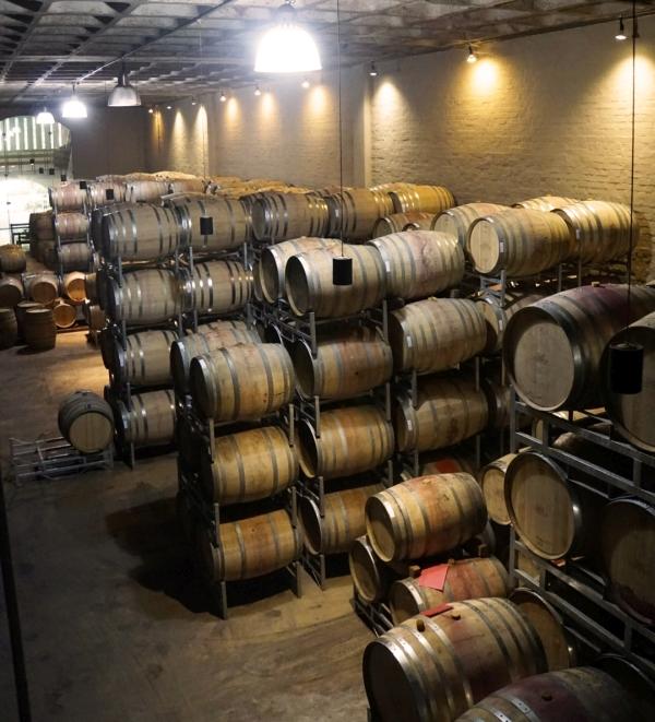 Barrique-Weinfässer von Groot Constantia, dem ältesten Weingut Südafrikas